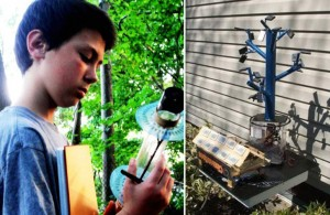 13-Year Old Replicates Fibonacci Sequence to Harness Solar Power | Fractal Enlightenment